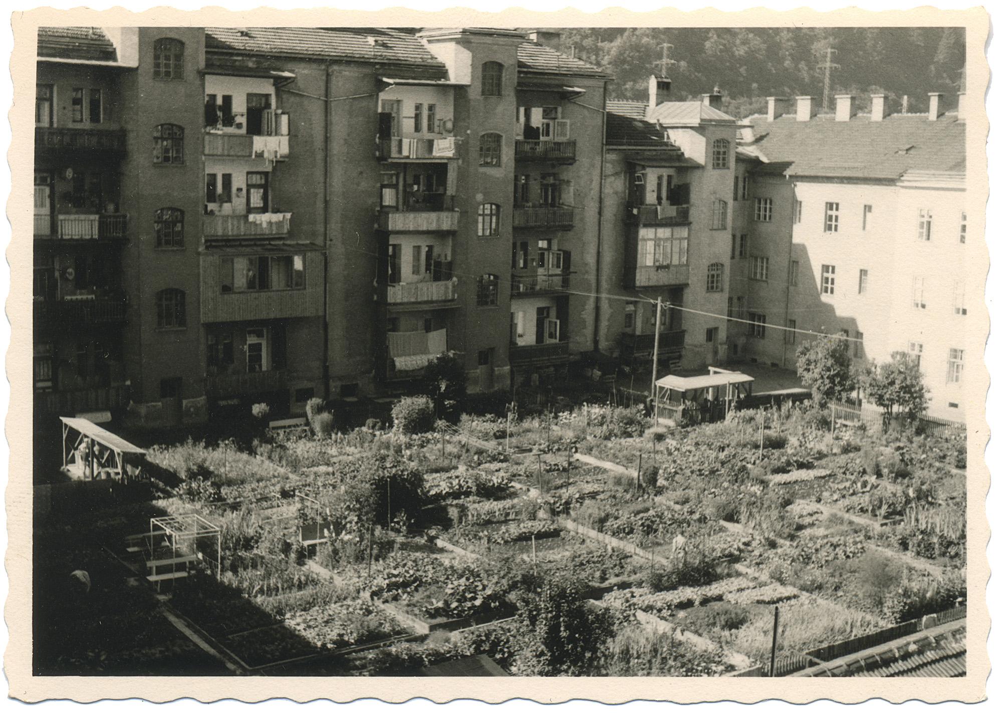 Urban Gardening I