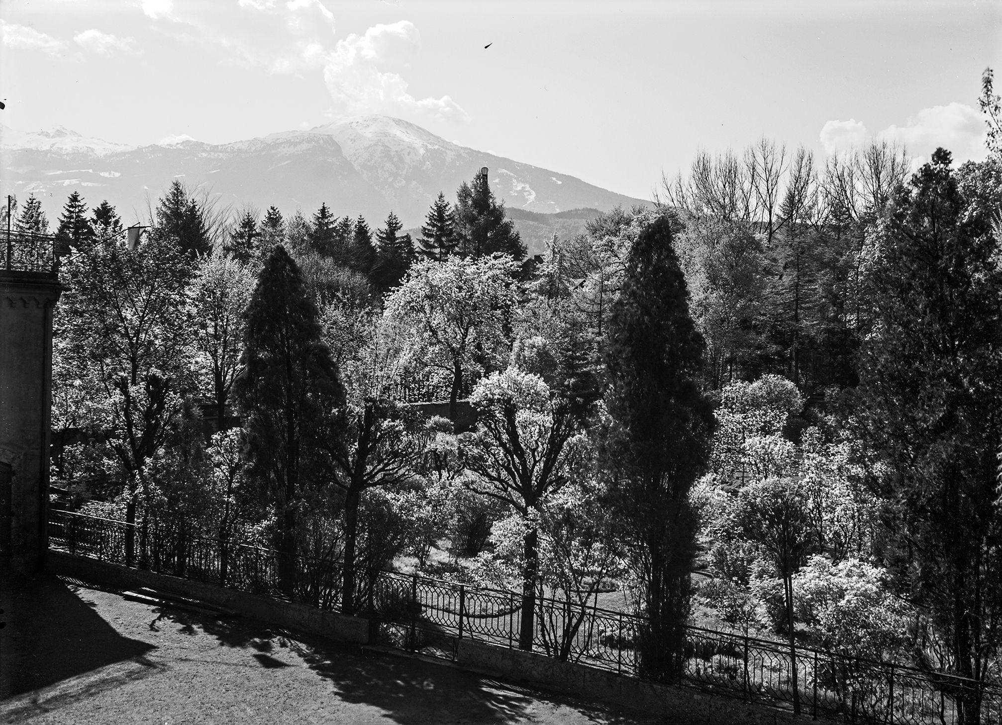 Terrassenblick: Mit Den Augen Des Unbekannten Fotografen XI