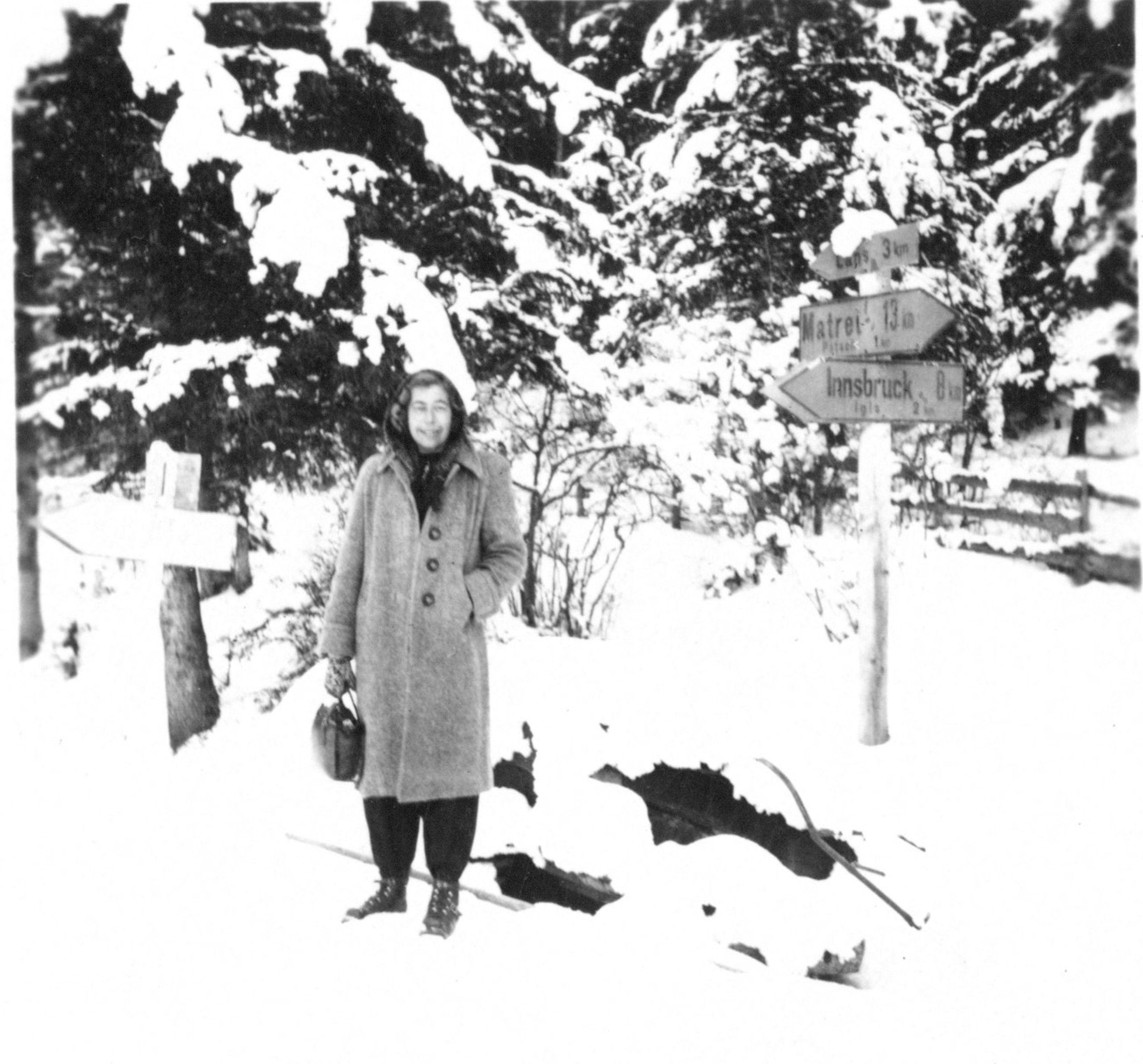 Als Ich Mich Fand In Einem Verschneiten Walde
