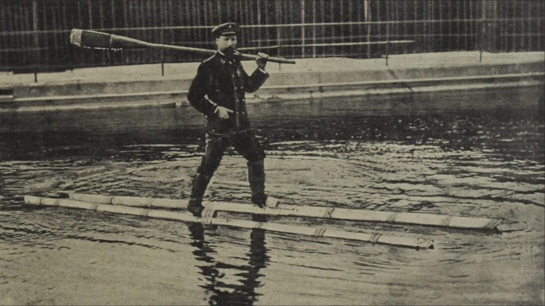 Ein Wasserläufer Auf Dem Inn